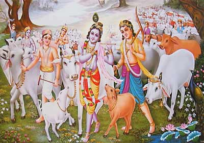 Lord Krishna Protected Cows