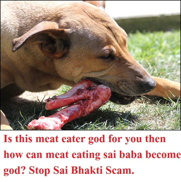 meat eater sai baba - fraudster of shirdi