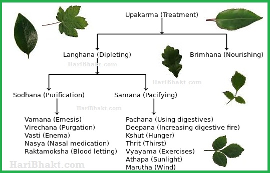 treatment principles - Ayurvedic Simple Rules of treating ailments
