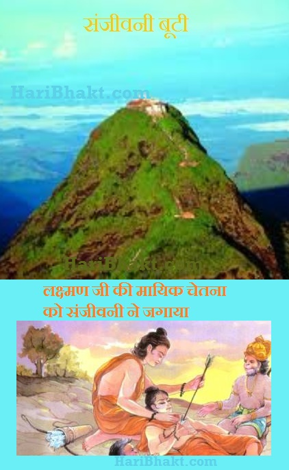 sanjeevani booti mountain - living proof of Ramayan and Ayurved