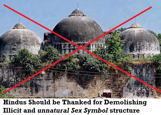 babri masjid was symbol of homosexuality and gay love