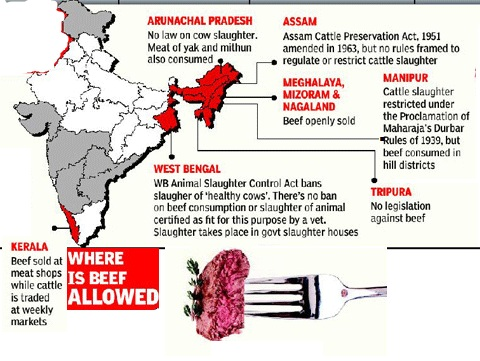 Beef eating is reason for diseases in India