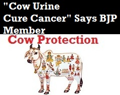Benefits of Cow Urine even BJP members are supporting - A welcome move