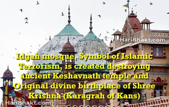 Demolish idgah mosque of Mathura for Original Krishna Janambhumi Temple