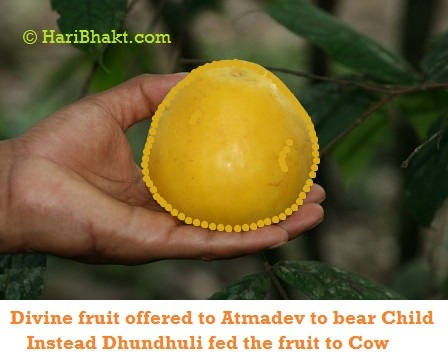 a blessed fruit for the Atmadev to feed it to his wife
