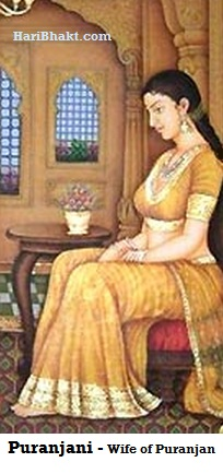 Puranjani was wearing a yellow sari. She had a golden belt around her waist and hollow anklet