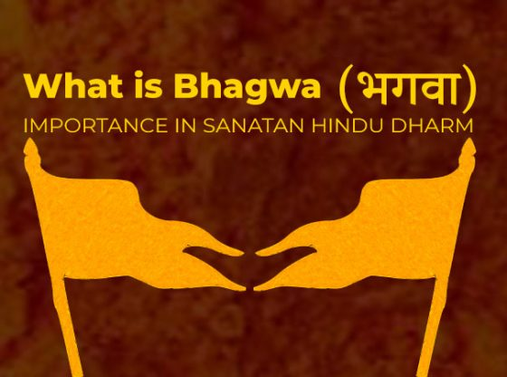 What is Bhagwa भगवा meaning