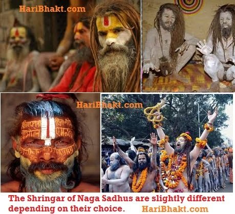 The Shringar of Naga Sadhus