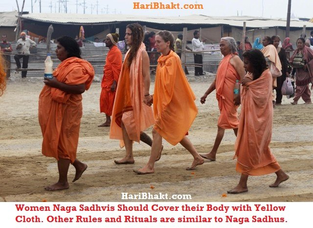 Women Naga sadhvis wear yellow clothes other rituals are similar to Naga Sadhus