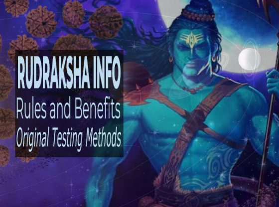 Rudraksha Information: Rules, Benefits and Original Testing Methods