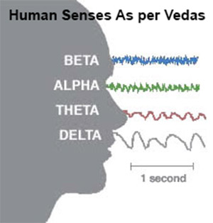 Consciousness in Indian Psychology of Senses: Human Senses as per Vedas
