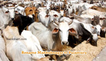 Replacing the Evil Name of Mahbubnagar to Palamuru