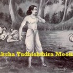 Greatest Question and Answer Session Ever Between Yudhishthira and Yaksha