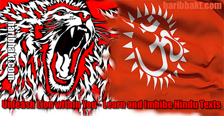 Learn and Imbibe Vedas and Hindu texts - Become Aggressive and United Hindu Lions