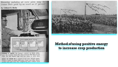 George Smith used music to grow corn with Veda Music Method of impacting plants