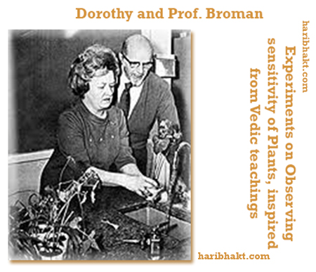 Hindu Veda Music inspired Dorothy Retallack and Professor Broman to conduct experiments