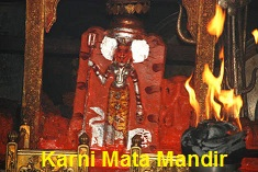 incredible karni mata temple bikaner