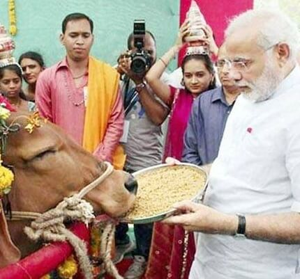 Narendra Modi You must Protect Cows and Gaurakshak