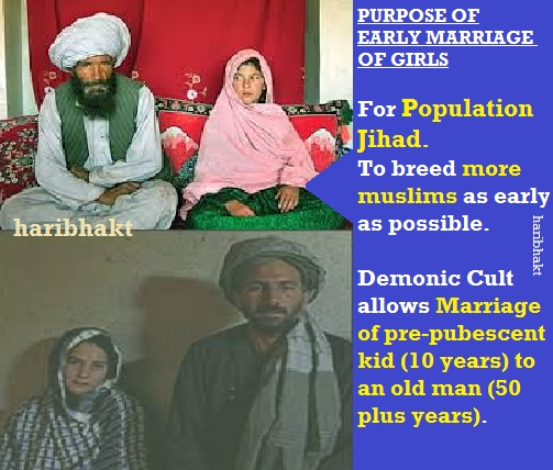 population jihad of mughal terrorists