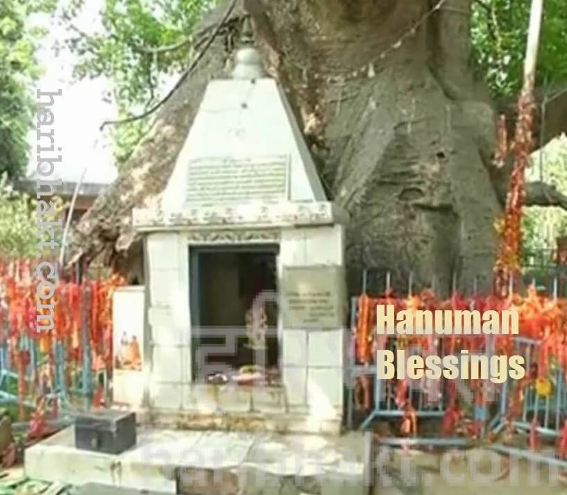 hanuman blessings and kalpavriksha parijaat
