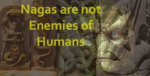Naga reptilian race truth