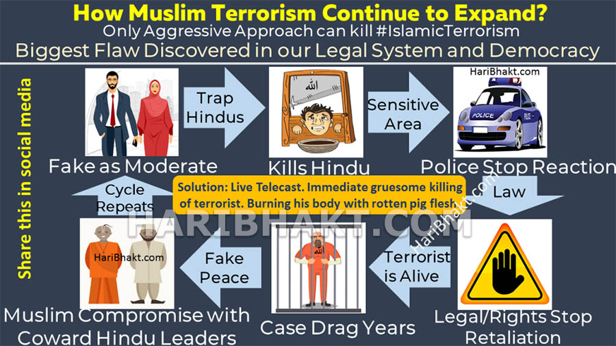 How islamic terrorism expands and Aggression can eradicate islamic terrorism