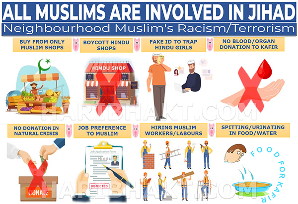 Neighbourhood Muslim's Jihad of Racism/Terrorism Infographic