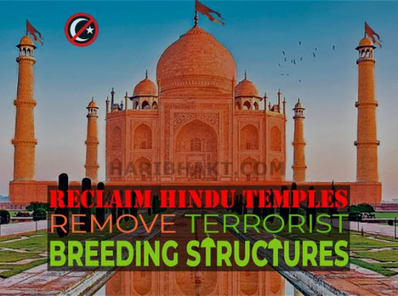 Reclaim Hindu Temples for World Peace - Mandirs of Bharat